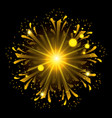 fireworks bursting in shape of flower with yellow vector image