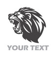 lion head roaring logo template vector image