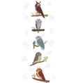 owl cute set vector image
