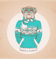 retro hipster animal bulldog dressed in pullover vector image vector image