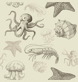 seamless pattern with aquatic animals vector image