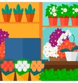 Background of flower shop vector image