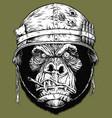 gorilla soldier vector image vector image