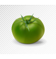 green realistic isolated tomato 3d tomato vector image