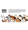 horizontal banner with dogs of different breeds vector image