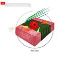 Nem Chua or Vietnamese Fermented Pork vector image