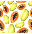 papaya pattern vector image vector image