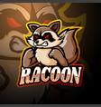 racoon esport logo mascot design vector image vector image
