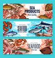 sketch banners for seafood fish food market vector image vector image