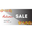 autumn sale banner and discount vector image vector image