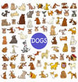 cartoon dog characters huge set vector image vector image