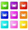crab icons 9 set vector image vector image