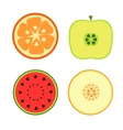 Fruits on a white background vector image vector image