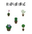 isometric houseplant set of flowerpot grower vector image vector image