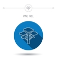 Pine tree icon Forest wood sign vector image vector image