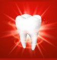 tooth on a red background vector image vector image
