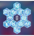 Zodiac signs and constellation into hexagonal vector image vector image