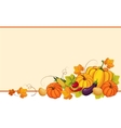 autumn banners with ripe vegetables swirls