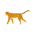 childish textured portrait walking leopard in vector image