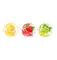 fresh fruits juice set melon watermelon grape vector image vector image