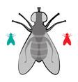 halftone fly icon vector image