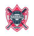 professional baseball championship vintage label vector image vector image