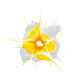 single explosion vector image vector image