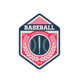 baseball college society vintage label vector image
