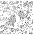 Birds coloring page vector image vector image