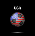 flag of usa in the form of a soccer ball vector image