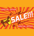 megaphone discounts and sales elements for vector image