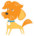 set funny mixed breed or mongrel dog vector image vector image