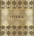 Vintage background with golden vintage label vector image vector image