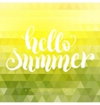 Hello summer hand lettering background vector image