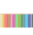 group of colored pencils vector image