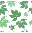 abstract natural green leaves seamless pattern vector image