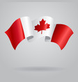 Canadian waving Flag vector image