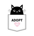 cat black face in pocket adopt me pink heart vector image vector image