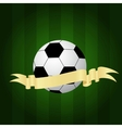 icon of soccer ball vector image vector image