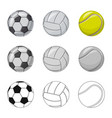 isolated object sport and ball symbol set of vector image vector image