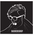 salon stylish hairdresser vector image