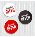 special offer banners vector image vector image