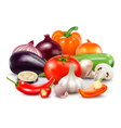 Vegetables Composition On White Background vector image