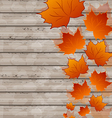 Autumn leaves maple on wooden texture vector image