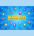 bingo or lottery card with colored number balls vector image vector image
