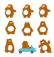 cute character brown bear variety action pack vector image