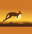 landscape of kangaroo on hill silhouettes vector image vector image
