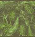 palmtrees seamless pattern green coconut or queen vector image