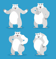Polar Bear set of different poses Expression of vector image