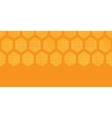 Abstract honey yellow honeycomb fabric textured vector image vector image